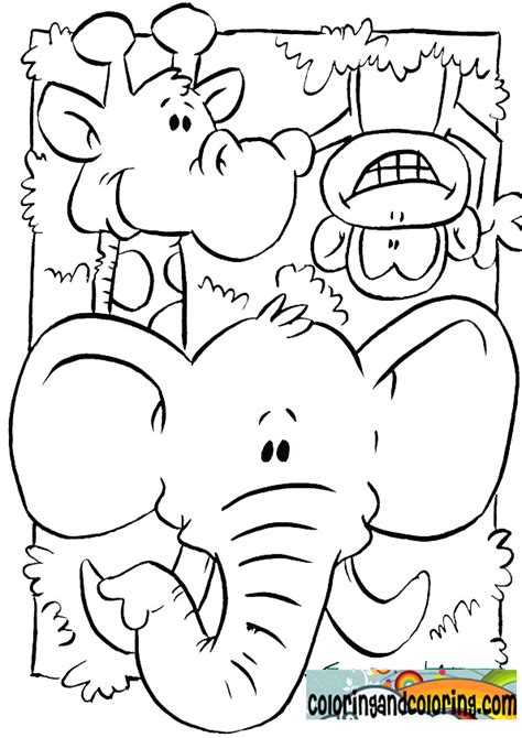 zoo animals printables  preschoolers zoo