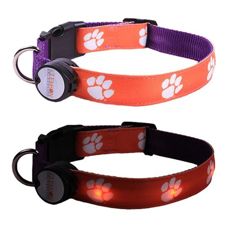 Lighted Collar by Lighted Collar And Leash Genius Boykin Spaniels