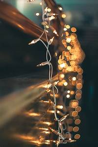 20, Best, Free, Fairy, Lights, Pictures, On, Unsplash