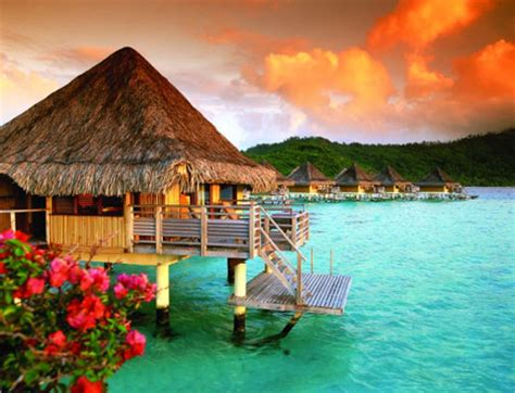 Brideca  Honeymoon 101 First Guide To Tropical
