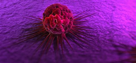 Research Into Novel Therapies