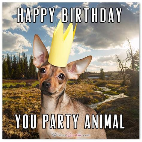 funniest   hilarious birthday messages  cards