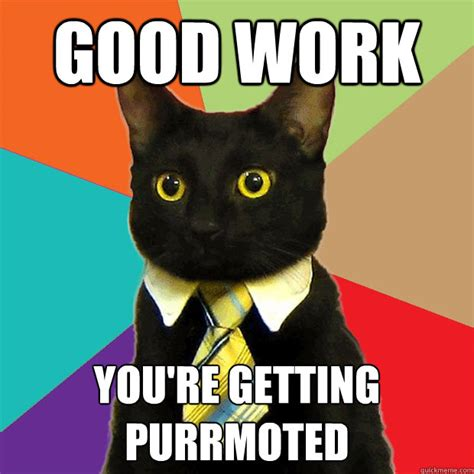 Working Cat Meme - good work youre getting purrmoted business cat