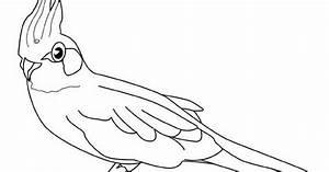 Wandschablonen Zum Ausdrucken Kostenlos : ausmalbilder malvorlagen papagei kostenlos zum ausdrucken m rchen aus aller welt der ~ Watch28wear.com Haus und Dekorationen