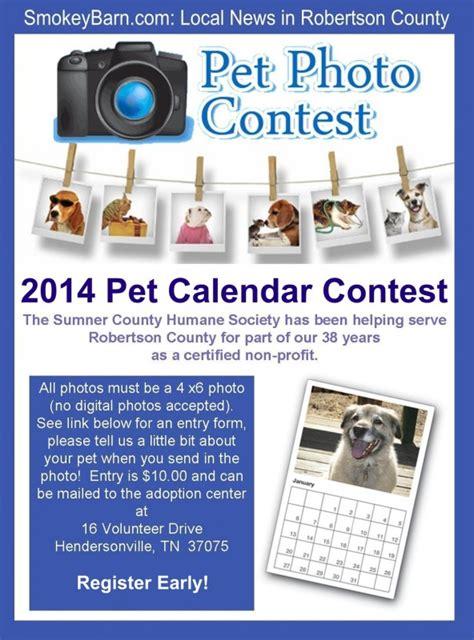 Permalink to Pet Adoption Flyer