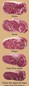 Beef Primal Cuts Chart  This Is A Good Chart For The