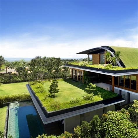 green roofing ideas 30 incredible green roof designs