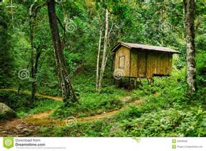 small log cabin house plans wooden small house in a tropical forest royalty free stock