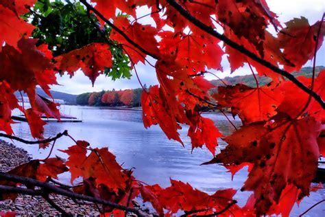 Western Maryland Fall Foliage Archives  Deep Creek Lake Blog
