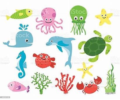 Sea Creatures Vector Illustration Fish Illustrations Clip