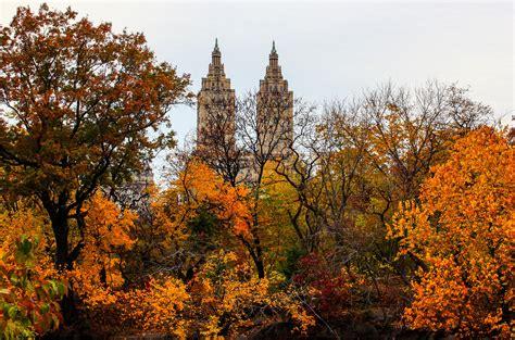 fall photo spots  central park