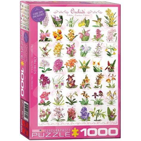 puzzle orchids eurographics 6000 0655 1000 pieces jigsaw puzzles forests flowers and gardens