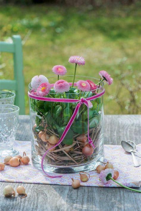 fruehlingsdeko mit bellis fruehlings dekoration