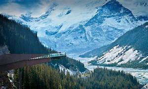 Columbia Icefield Adventure: Athabasca Glacier Tours and ...