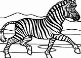 Zebra Coloring Printable Marty Drawing Zebras Stripes Without Shark Sheet Animal Cartoons Getdrawings Coloringpages101 Animalplace sketch template