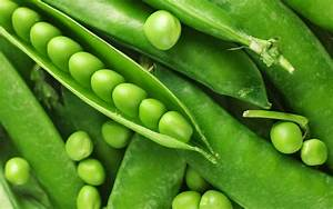 Nature, Plants, Peas, Wallpapers, Hd, Desktop, And, Mobile, Backgrounds
