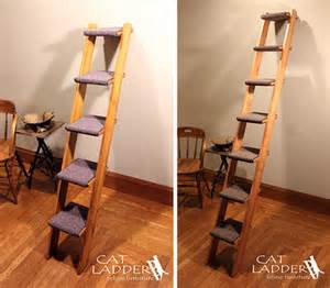 cat ladder give kitty own ladder to climb hauspanther