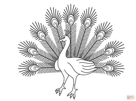 peacock cartoon drawing  getdrawings