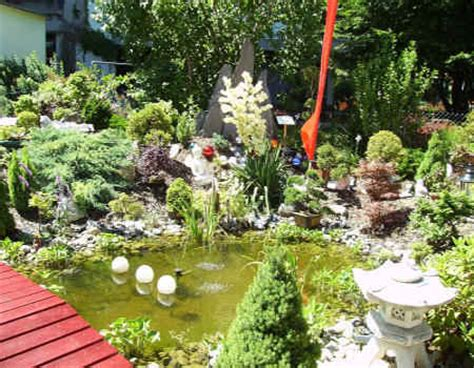 2006 Bilder 1 Carmensbonsaigarten Onlineshop Für Bonsai