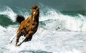 Schöne 3d Bilder : sch ne pferde bilder die die gro artigkeit der pferde zeigen ~ Eleganceandgraceweddings.com Haus und Dekorationen