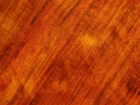 types of wood floor finishes types of wood finishes and finished wood