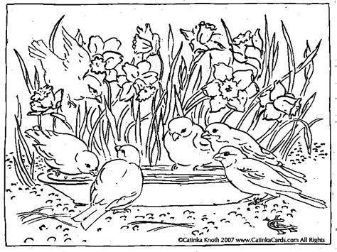 spring coloring pages   cool funny