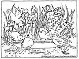 Coloring Garden Flower Pages Landscape sketch template
