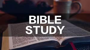Bible Studies  ... Bible Study