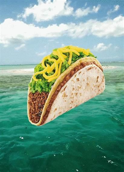 Taco Tacos Vertical Gifs Double Bell Decker
