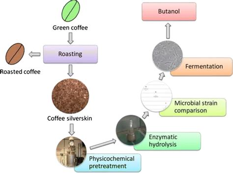 There's a whole range of methods out there that you can use to brew outstanding coffee at home. Chemical Makeup Of Coffee - Mugeek Vidalondon