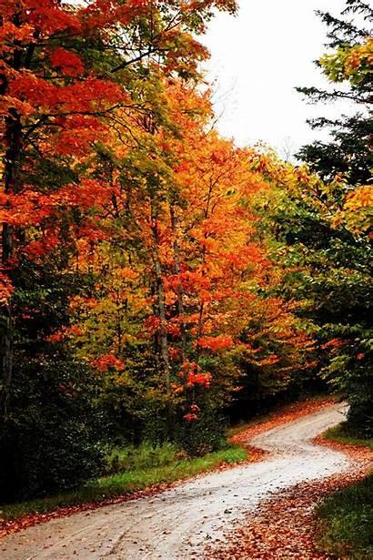 Fall Autumn Roadway Lovethispic Cozy Scenery Pa