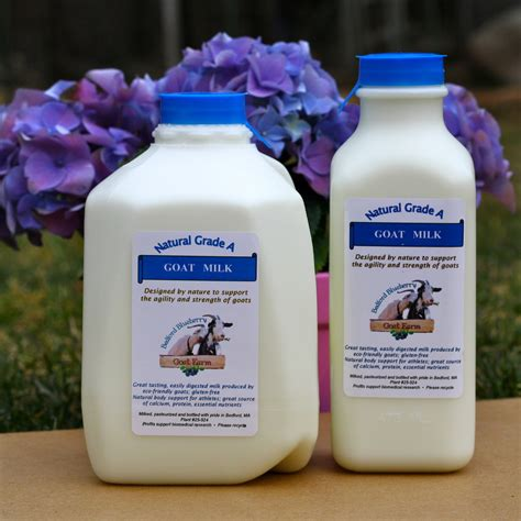does goat cheese lactose bedford blueberry goat farm grade a goat milk goat cheese