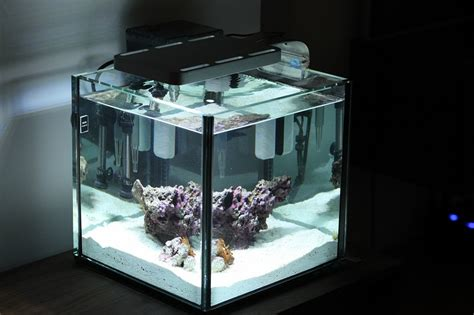5 Gallon Pico Aquarium features Elos Elite News Reef Builders   The Reef and Marine Aquarium Blog