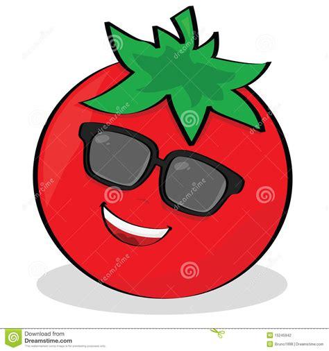 cool tomato stock photography image