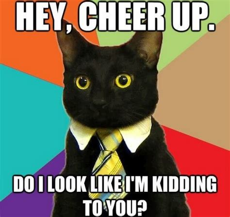 Cheer Up Cat Meme - cheer up memes lovequotesmessages