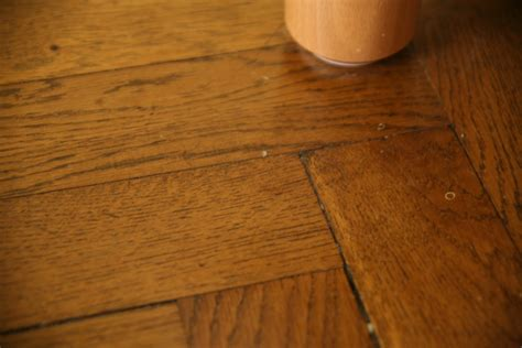 Buffing Wood Floors By by Buffing Hardwood Floors To Remove Scratches Image Mag