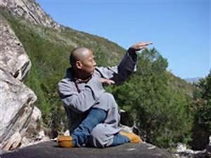 THE ANTHROPISTS: Animal Kung Fu