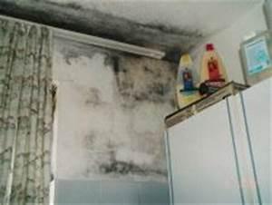 Schimmelpilz Im Badezimmer : schimmelpilz ~ Sanjose-hotels-ca.com Haus und Dekorationen