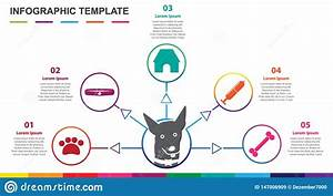 Infographic Template For Pet  5 Steps Mindmap Diagram