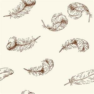 Feather free vector download (373 Free vector) for ...