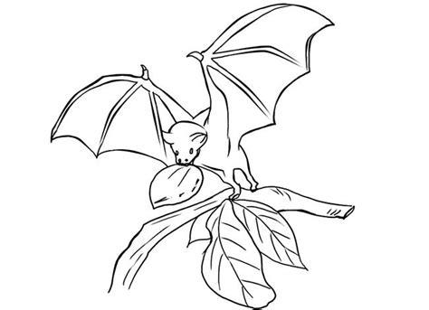 bat template animal templates  premium templates