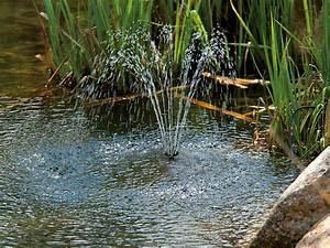 Springbrunnen Für Teich : royal gardineer solarpumpe teich und springbrunnen pumpe mit 2 watt solarpanel und akkubetrieb ~ Eleganceandgraceweddings.com Haus und Dekorationen