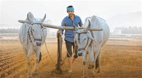 maharshi box office collection mahesh babus film set