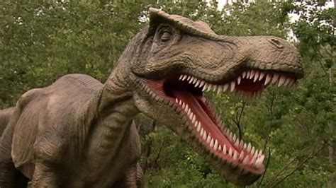 'real-life' Dino Park Video