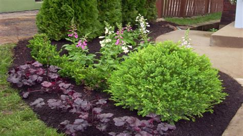 small shrubs for front yard small front porch design ideas easy front yard landscaping landscaping bushes and shrubs
