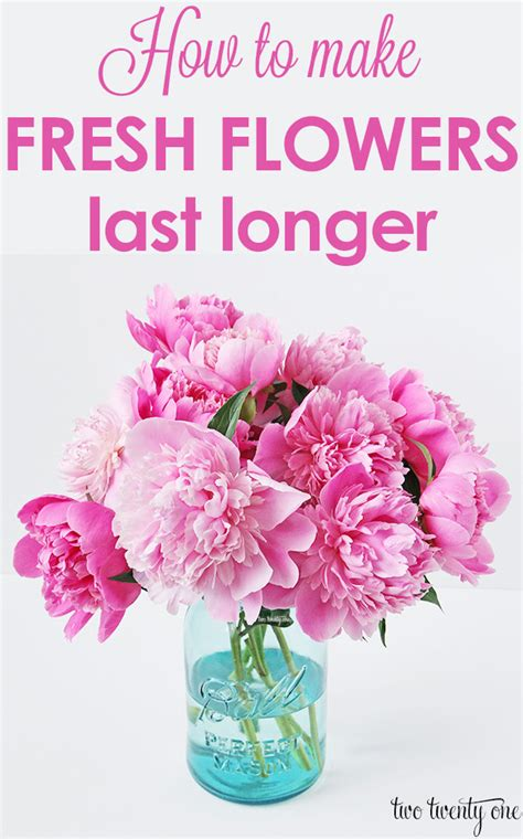 Make Cut Flowers Last Longer by How To Make Fresh Flowers Last Longer