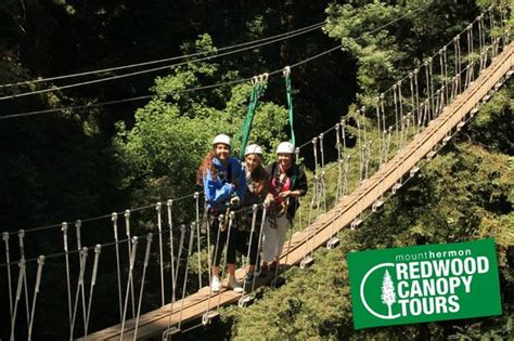 redwood canopy tours the bridge picture of redwood canopy tours mount hermon