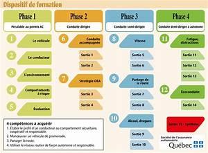 Diagramme Du Parcours Pesr
