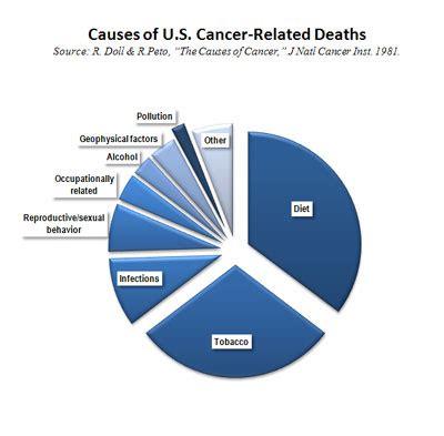 cancer risk factors safechemicalpolicy org