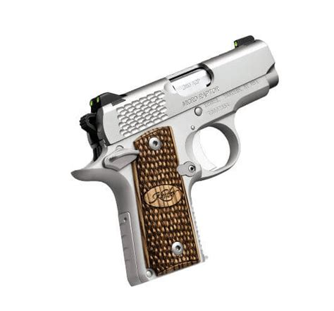 Kimber Micro Raptor Stainless (.380)   Double Action ...
